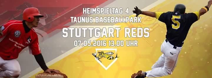 07.05. 13h Hornets vs Stuttgart Reds